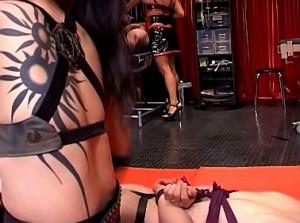 Gemartelde slaaf smeekt zijn gemene domina om genade